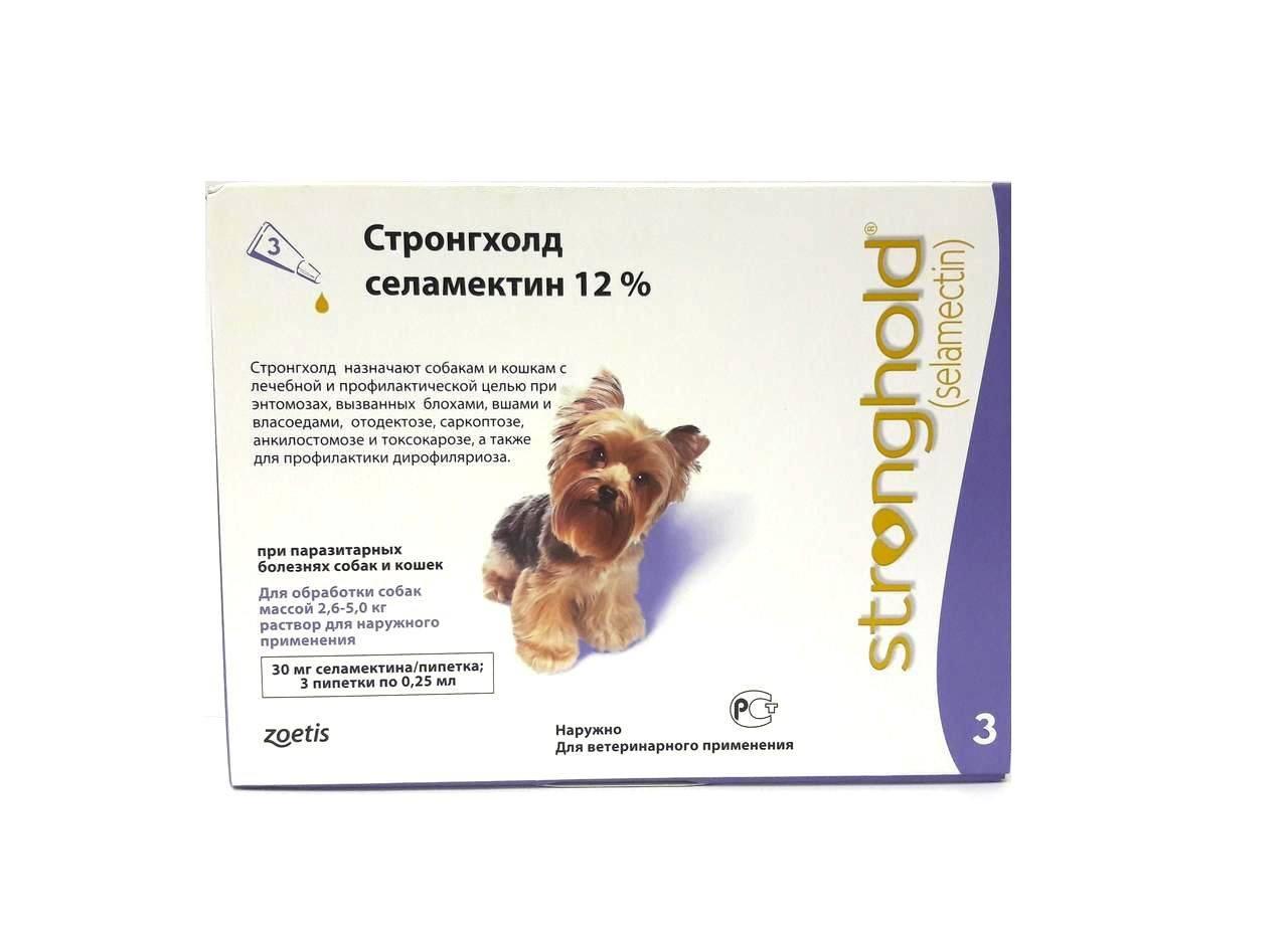 Капли стронгхолд для собак: инструкция по применению, цена, отзывы