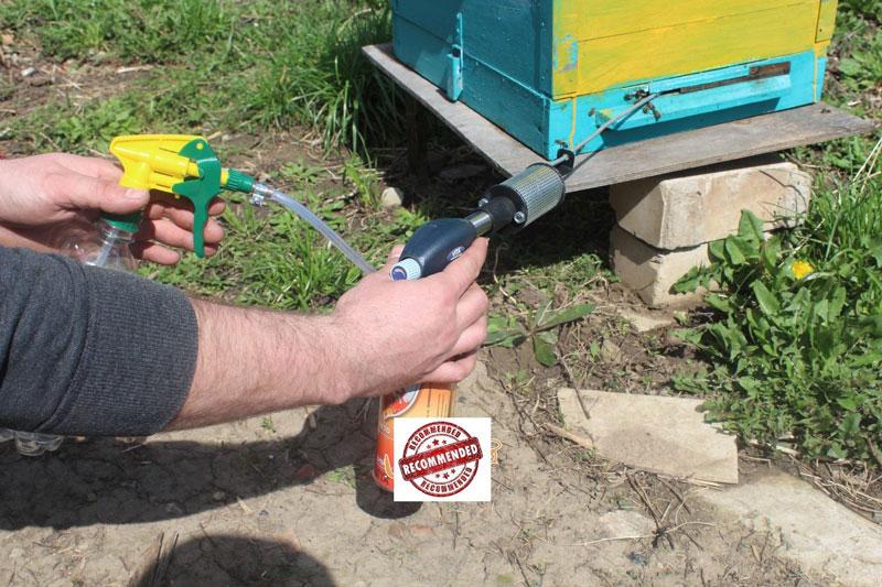 Обработка пчел от клеща осенью - как и чем лучше