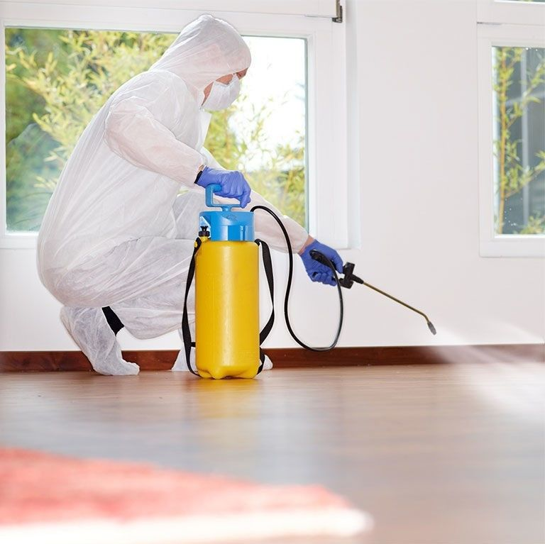 Как избавиться от неприятного запаха после уничтожения клопов?: useful_faq