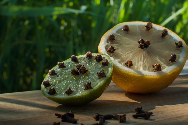 Народный метод в борьбе с комарами: гвоздика и лимон