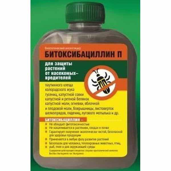 Препараты, помогающие избавиться от гусениц на деревьях