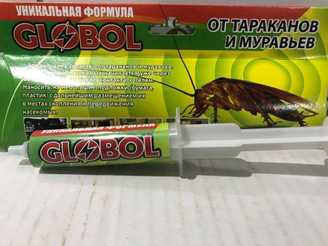 """Лучшая паста-гель """"глобол"""" (""""globol"""") против тараканов"""