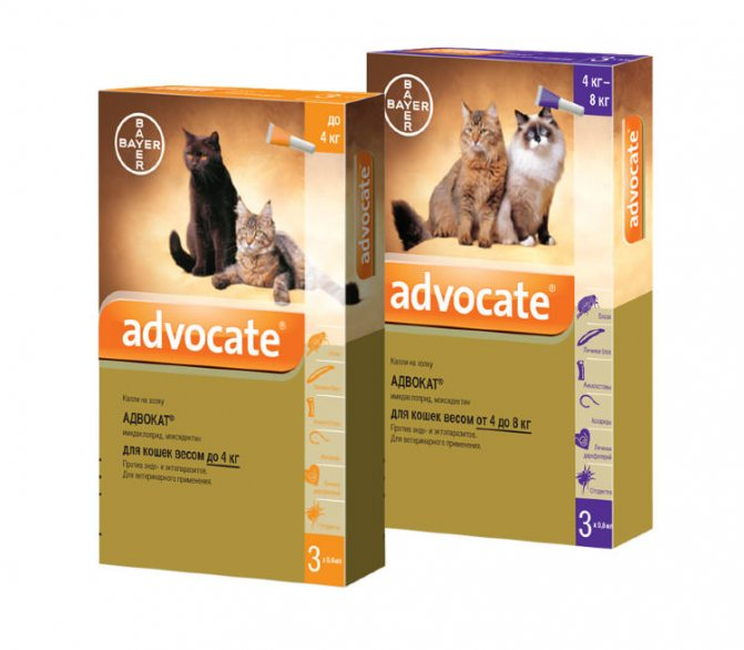 Капли адвокат от блох для собак и кошек – инструкция по применению, отзывы