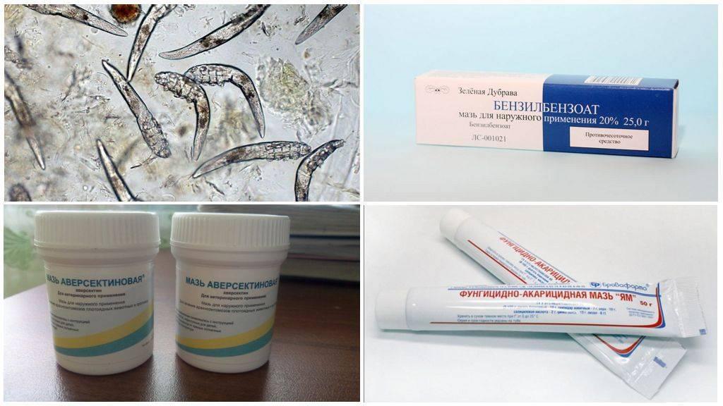 Как лечить демодекоз кожи на лице и глазах медикаментозно и в домашних условиях