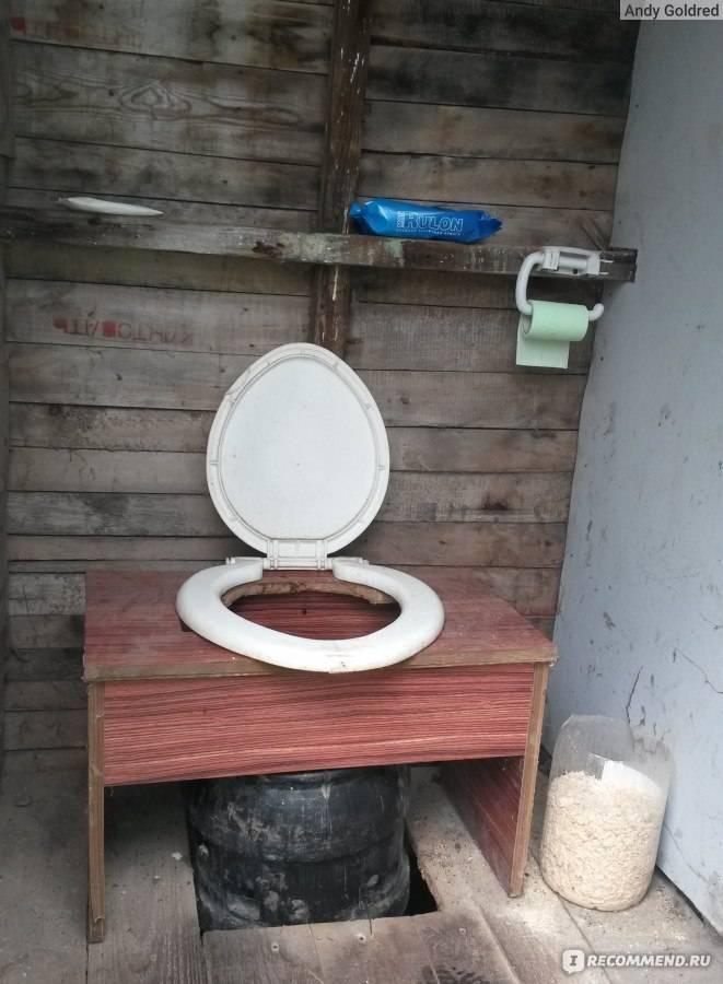 Как проще всего избавиться от мух и опарышей в выгребном туалете на даче