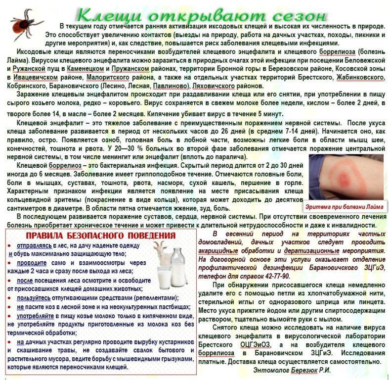 Козы и клещевой энцефалит - сорнякам нет