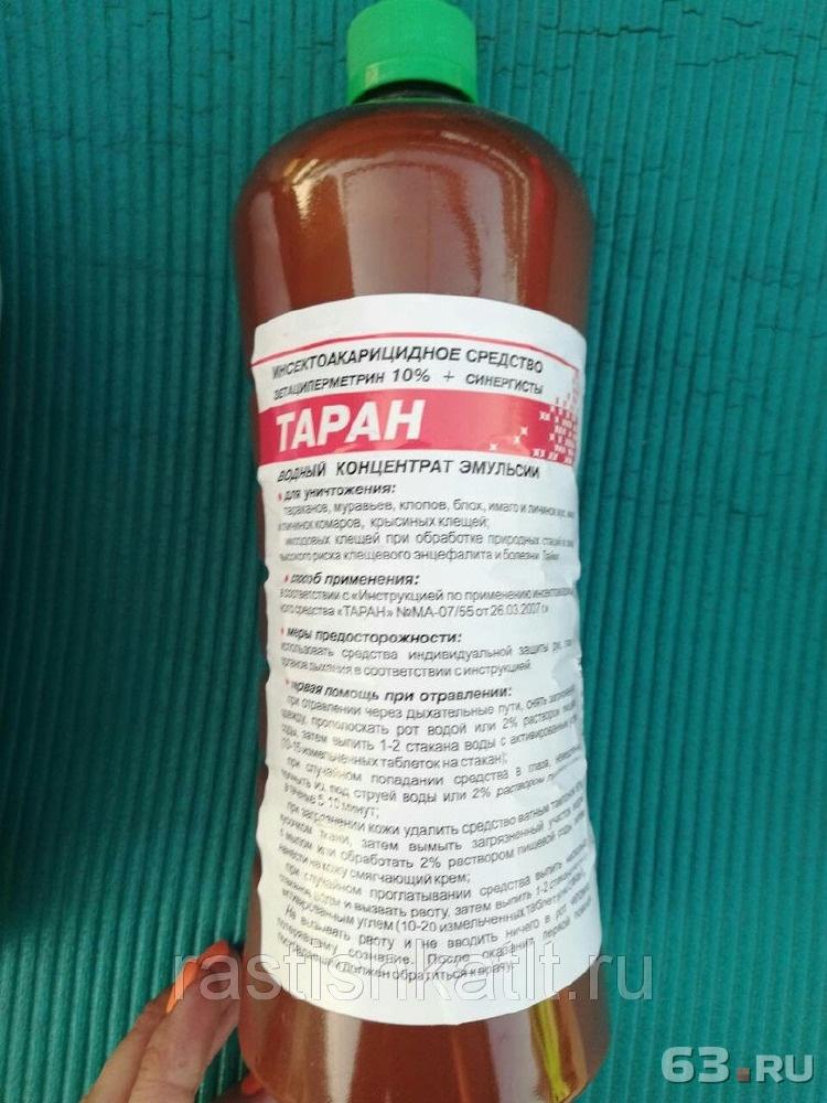 Таран от тараканов: описание, инструкция по применению и отзывы