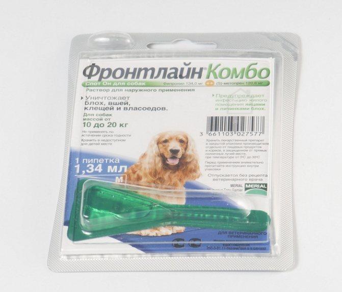 Фронтлайн для кошек, инструкция по применению препарата от блох и клещей в виде спрея и капель