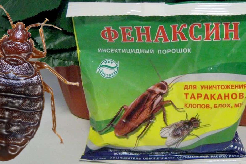 ❶ экокиллер от клопов: эффективность препарата по отзывам покупателей и инструкция по применению инсектицида, как он действует и как его наносить