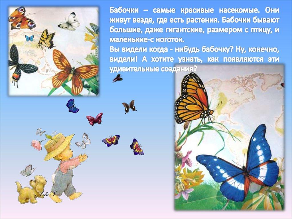Немного об интересном: что символизирует бабочка в психологии, различных культурах и фэн-шуй