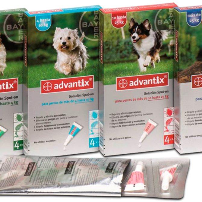Капли адвантикс: инструкция по применению для собак