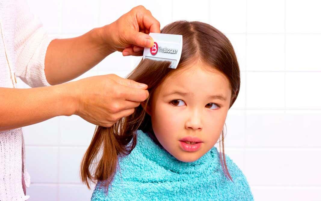 У ребенка вши? лечение педикулеза за один раз. как избавиться от вшей. лечение педикулеза у ребенка