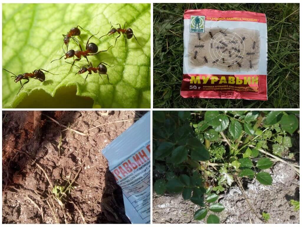 Применение муравьиного спирта