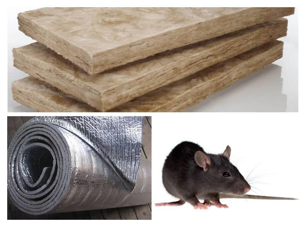 Какой утеплитель не грызут мыши и крысы: новинка на рынке