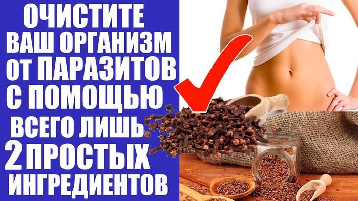Народные средства от паразитов в организме. очищение организма от паразитов в домашних условиях