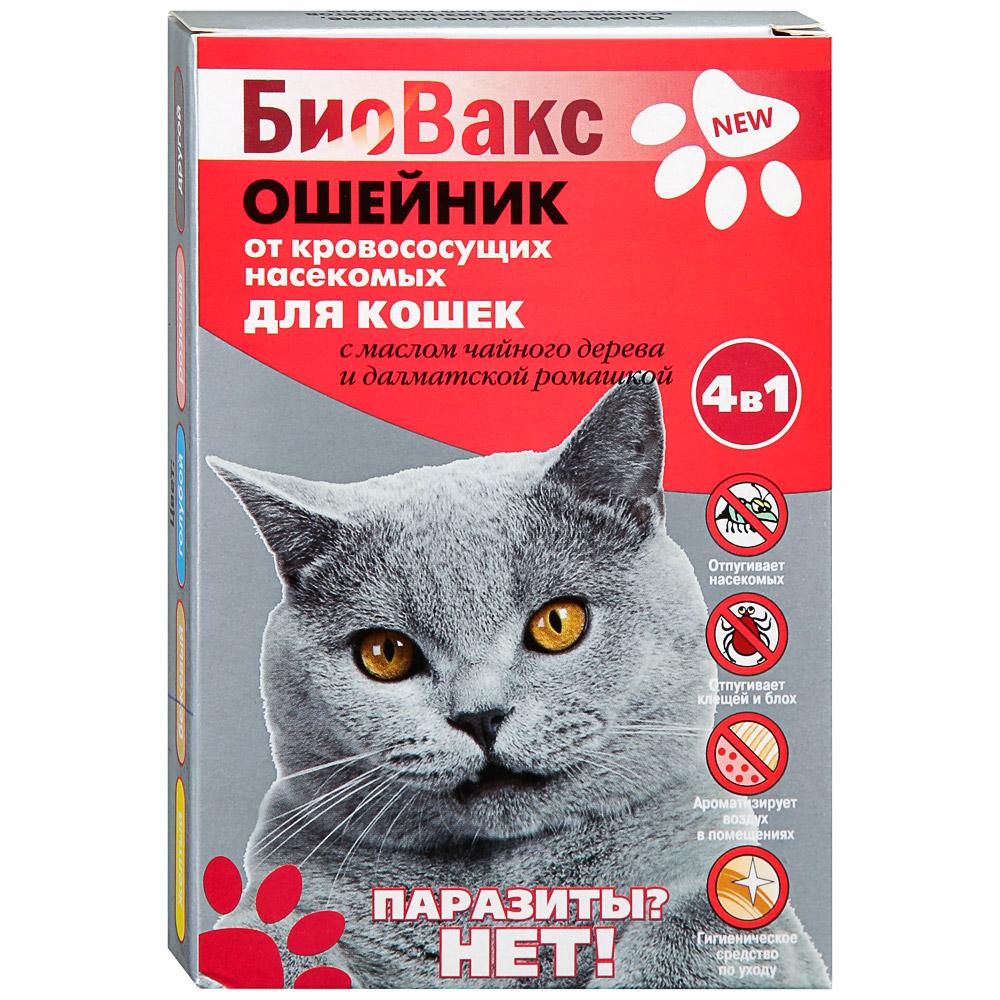 Как действует ошейник от блох для кошек и котят