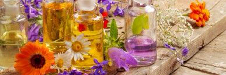 Как применять масло чайного дерева от вшей и гнид - 3 рецепта