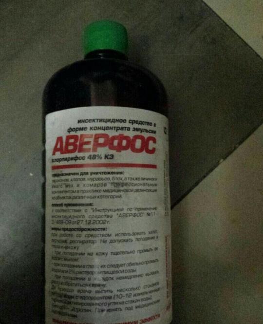 Правильное использование средства аверфос от клопов. отзывы о данном продукте.