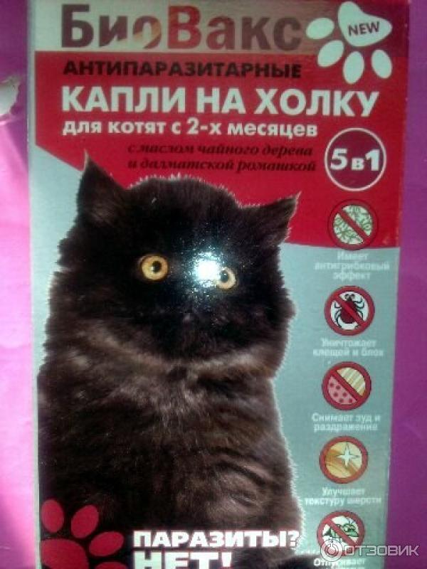 Как правильно использовать капли адвокат для собак? адвокат для взрослых котов и кошек