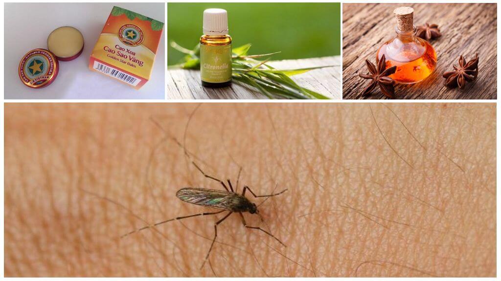 Эффективные методы уничтожения комаров на дачном участке