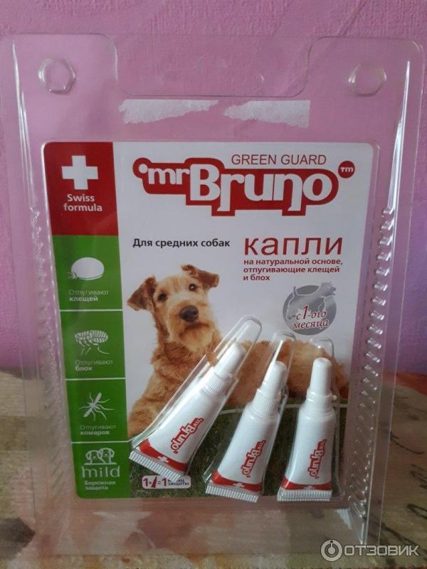 Лучшие препараты для собак от клещей и блох