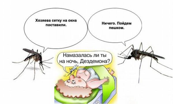 Почему комары пьют кровь: какую группу крови любят комары