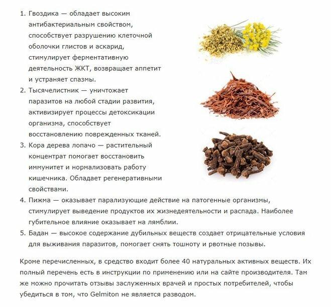 Народные средства от глистов у человека - рецепты