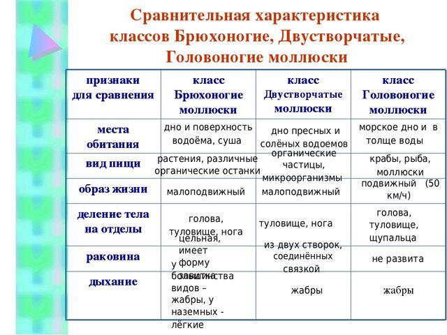Виды моли: краткое описание, фото, чем питаются, какой вред наносят, особенности каждой разновидности русский фермер