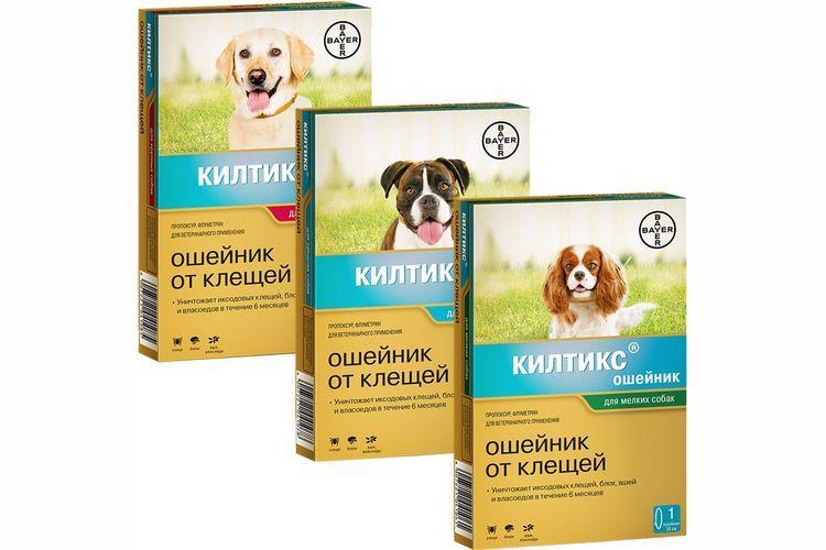 Ошейники для собак от блох и клещей: список популярных моделей