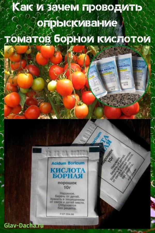 Борная кислота в саду и огороде – инструкция по применению