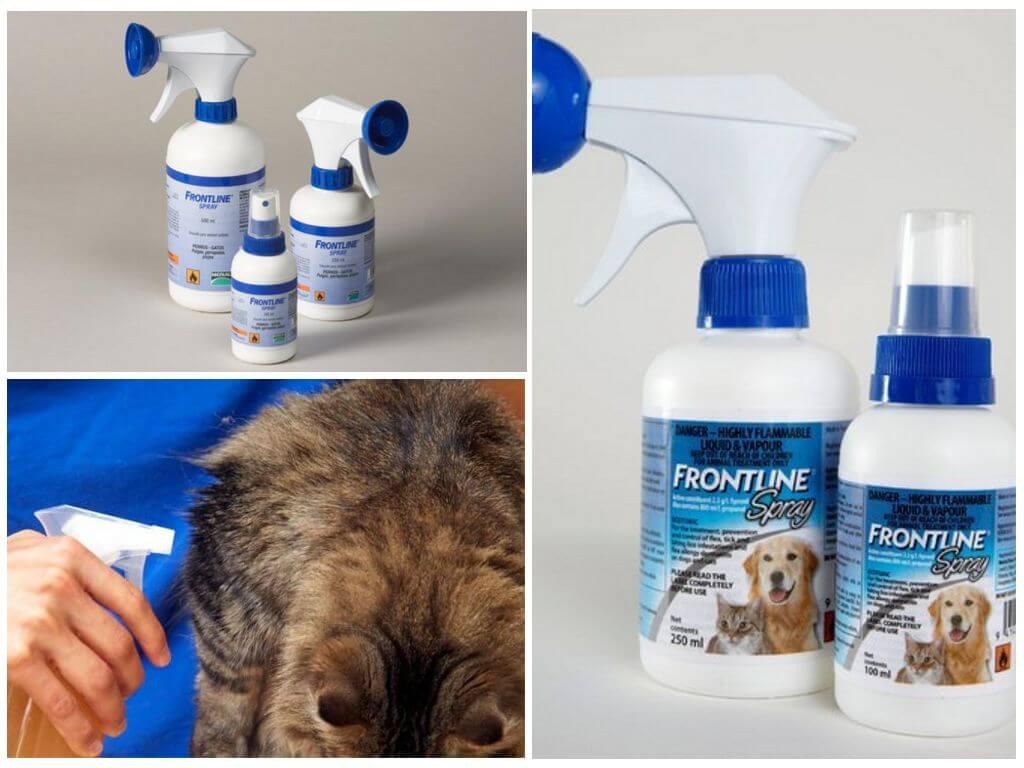 Серия средств от блох фронтлайн  у кошек и собак