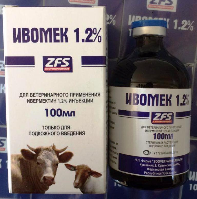 Вши у коров: симптомы, лечение медикаментозными и народными средствами
