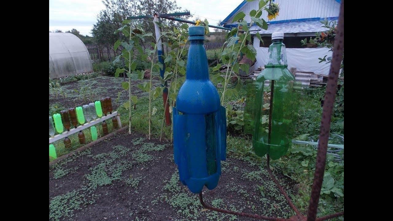Как сделать из пластиковой бутылки отпугиватель кротов