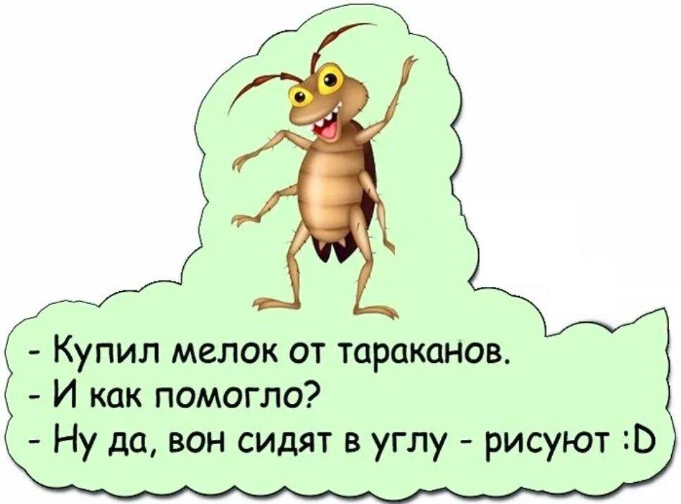 Куда делись тараканы из квартир на самом деле?