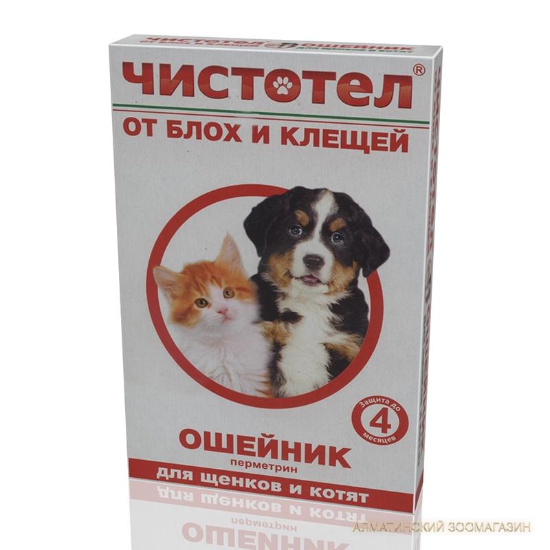 Выбор и использование ошейника от блох и клещей для собак