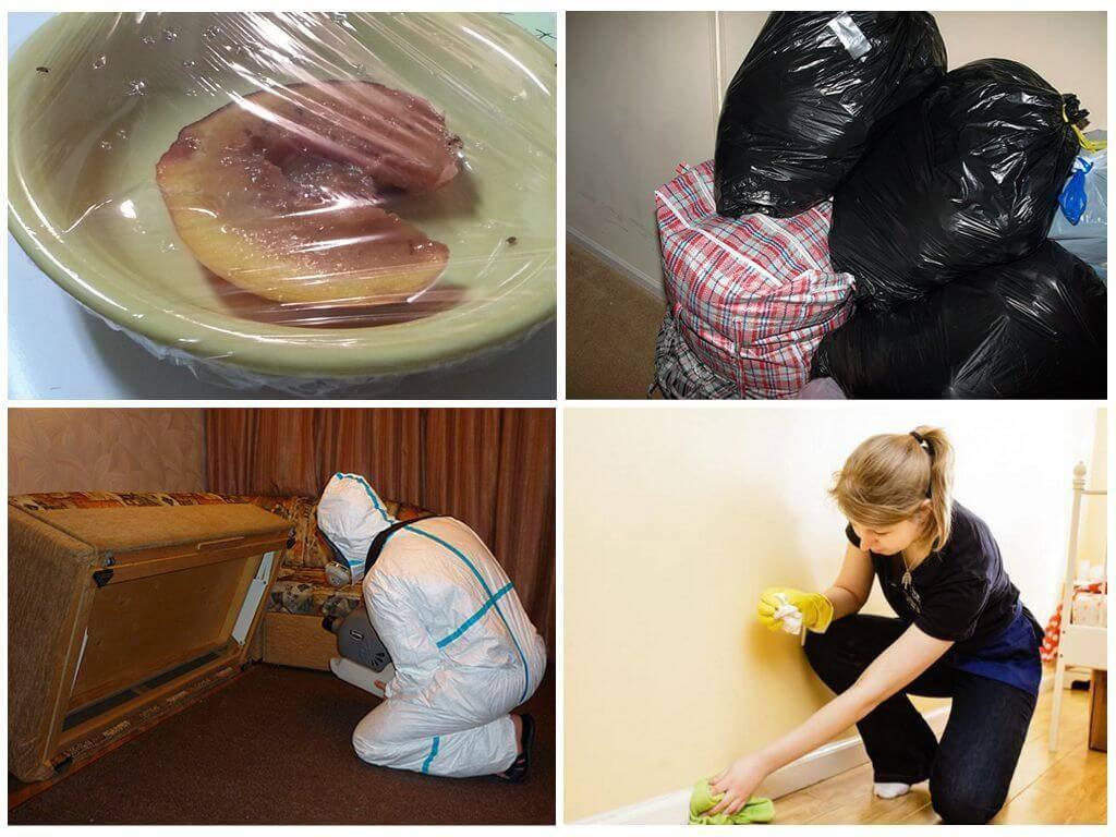 Подготовка помещения к уничтожению тараканов