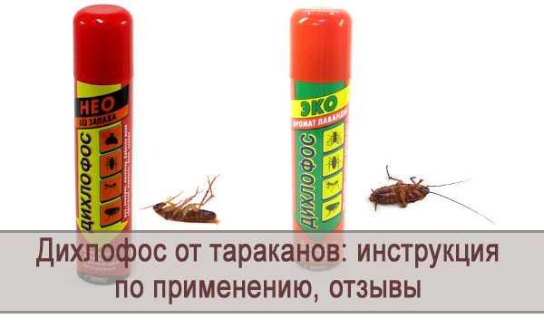 Помогает ли дихлофос от тараканов? обзор разных марок