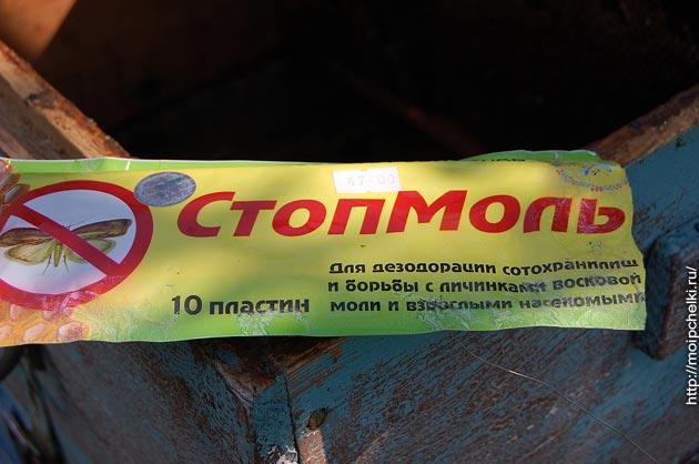 Восковая моль: что это такое, фото, какой вред наносит пчелиным семьям, как с ней бороться в ульях и сотохранилищах русский фермер