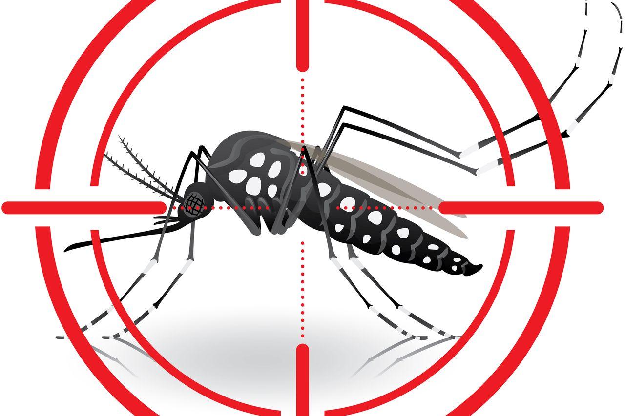 К чему снятся комары кусают во сне. что означает образ комара во сне – толкования по сонникам и согласно народным поверьям