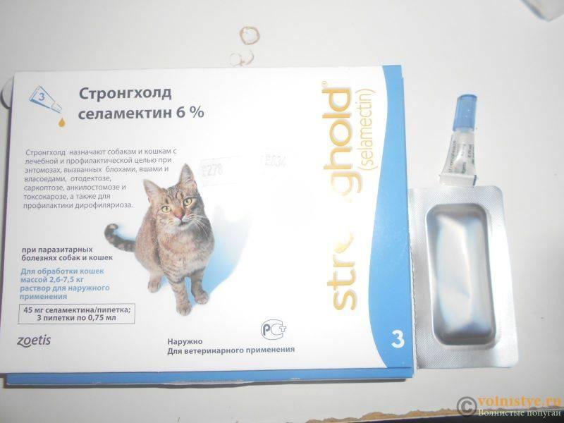 Стронгхолд для кошек: состав, применение, отзывы о препарате