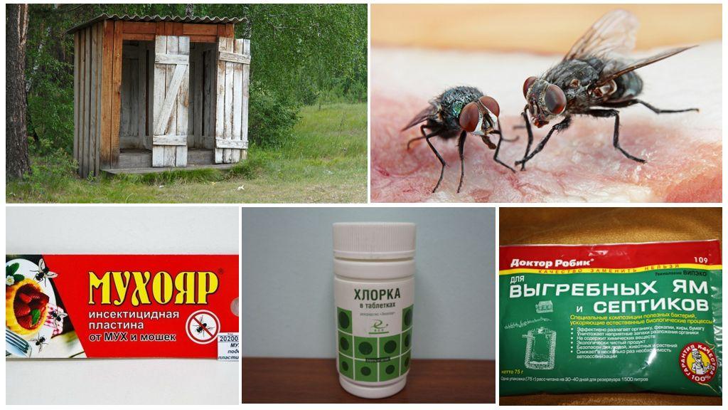 Как бороться с мухами на даче