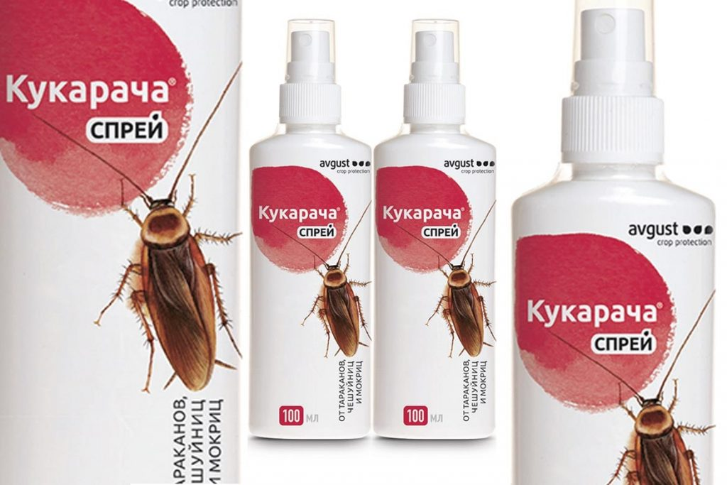 ❶ раптор от клопов отзывы и инструкция по применению аэрозоль и аквафумигатор для уничтожения ползающих насекомых