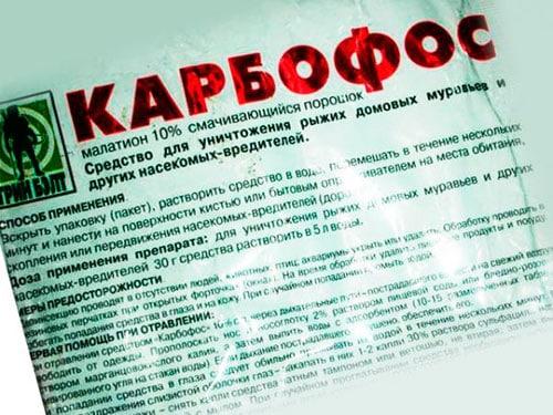 """❶ """"карбофос"""" от клопов: отзывы и инструкция по применению в порошке и разведенном виде"""