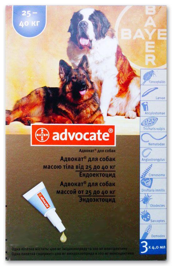 Адвантикс для собак – защита от блох и клещей. для чего предназначены капли адвантикс и как их правильно применять для собак?