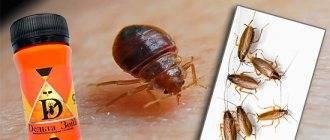 Средство дельта зона от клопов: инструкция, эффективность и отзывы / как избавится от насекомых в квартире