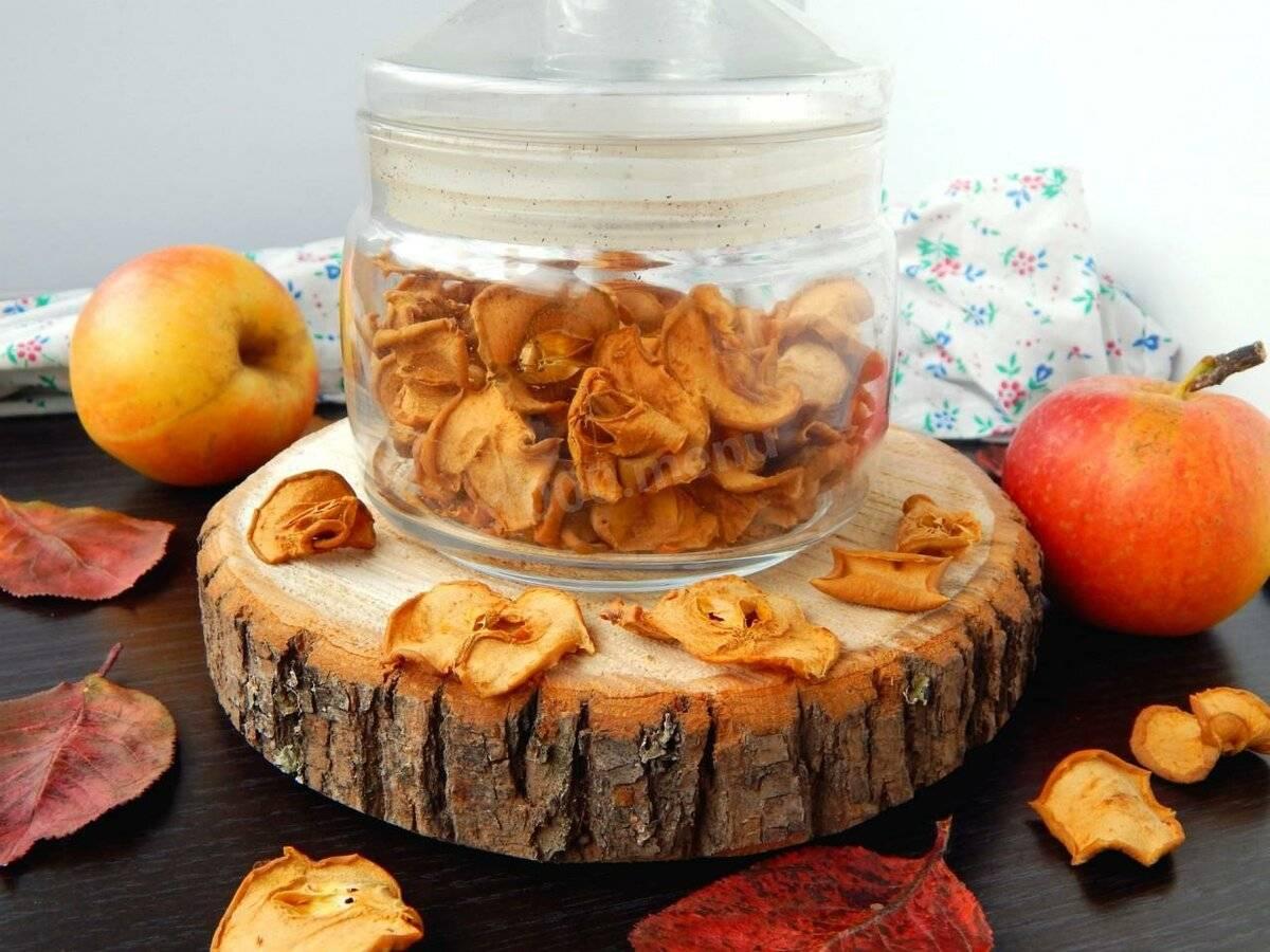 Как сохранить сухофрукты от моли в домашних условиях (яблоки, абрикос)