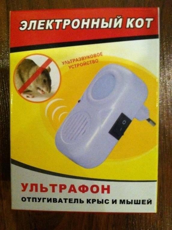 Как избавиться от мышей в квартире навсегда народными средствами