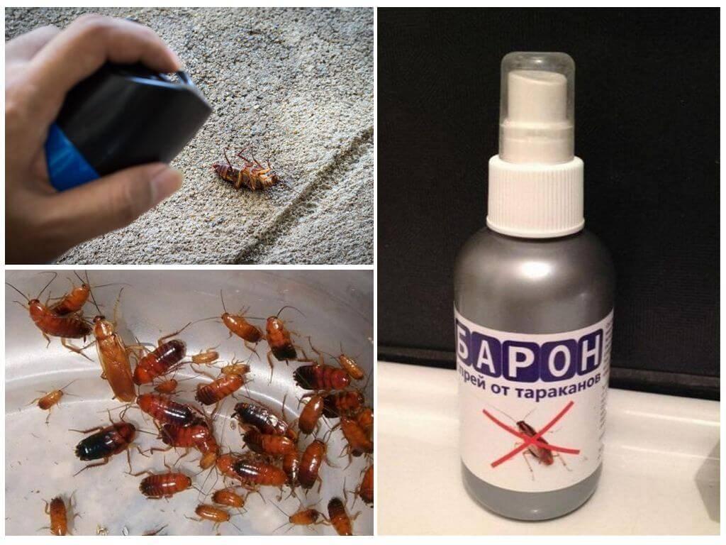 Средство от тараканов барон спрей отзывы
