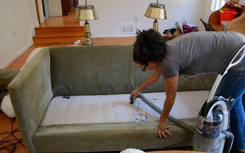 Как избавиться от клопов в диване, от чего они появляются