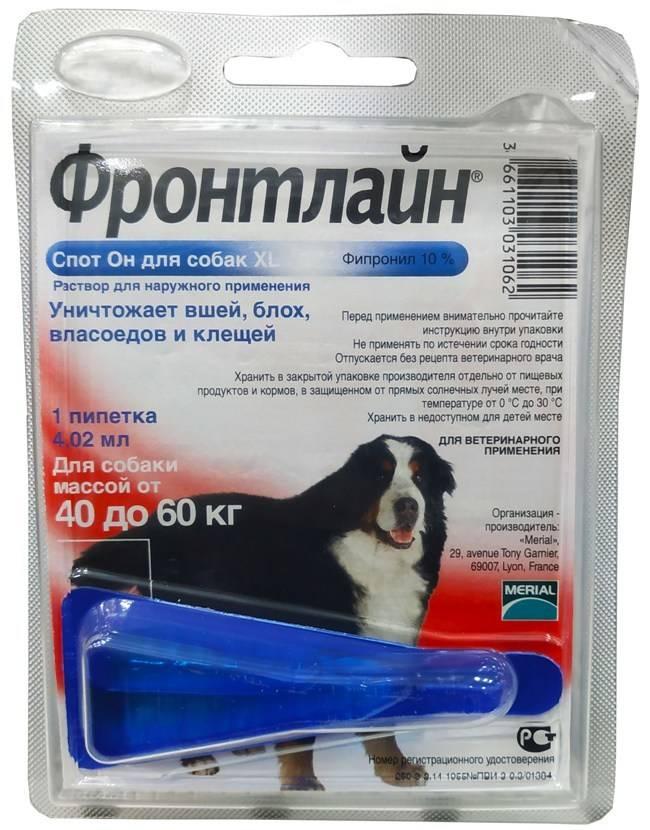 Фронтлайн для собак: инструкция по применению | цена